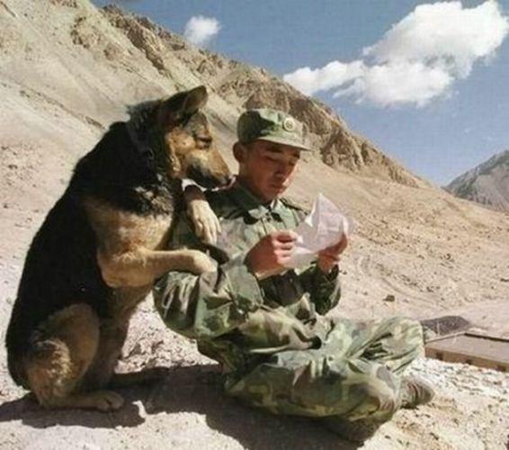 Как написать письмо в армию другу