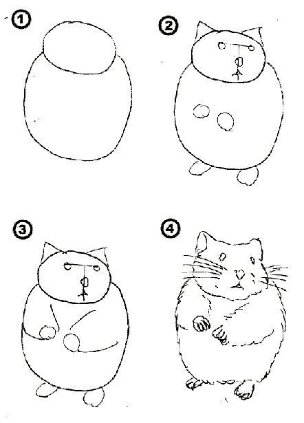 Как нарисовать хомяка