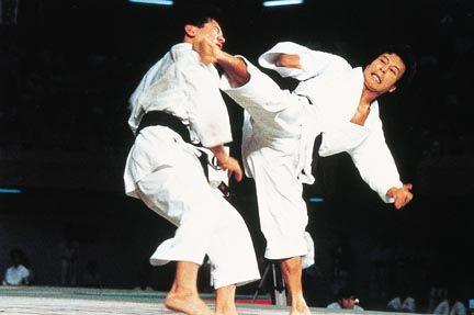 Как научиться драться каратэ