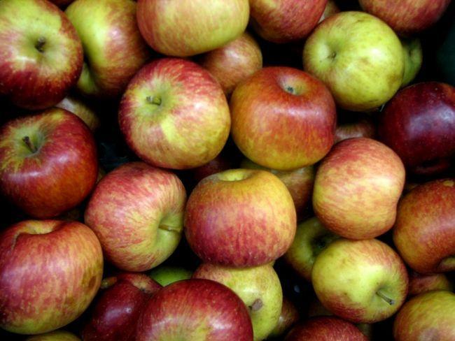 Как сделать вино из яблок