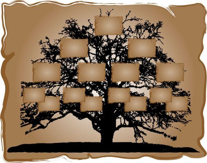 Как составить древо семьи