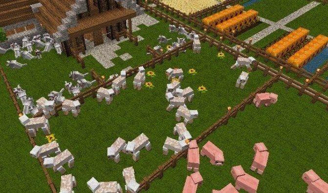 Фермы в