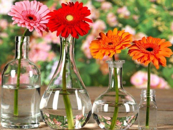 Как сохранить букет цветов