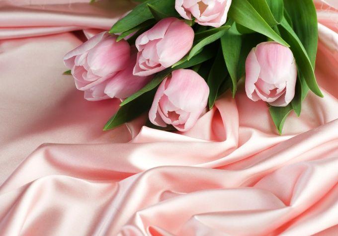 Цветы - прекрасные и хрупкие создания, за которыми нужен особый уход
